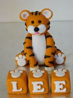 Tiger & Name Blocks